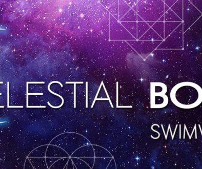 CelestialBodyBannerFinal copy